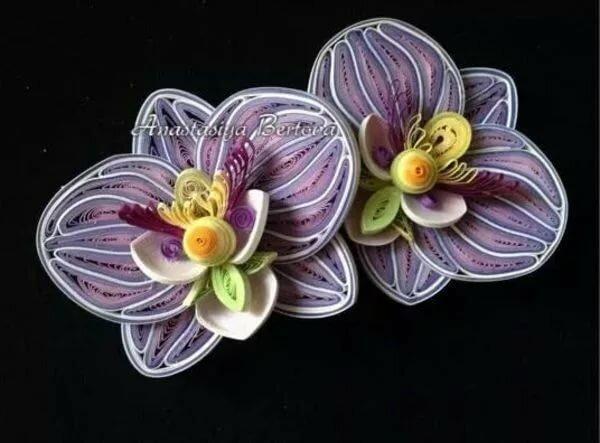 орхидея квиллинг фото порядку приветливы людях