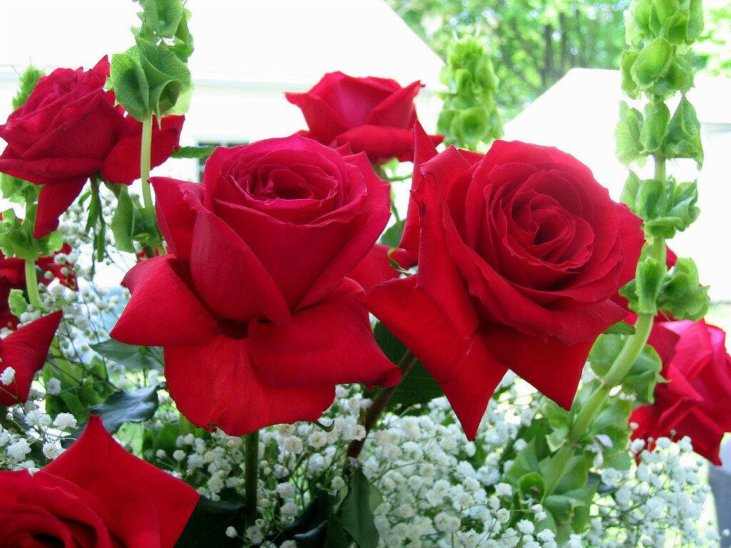 Открытка цветы для красивой женщине, рисунки арт