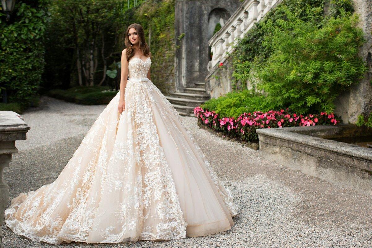 могли все свадебные платья мира картинки человека белой жировой