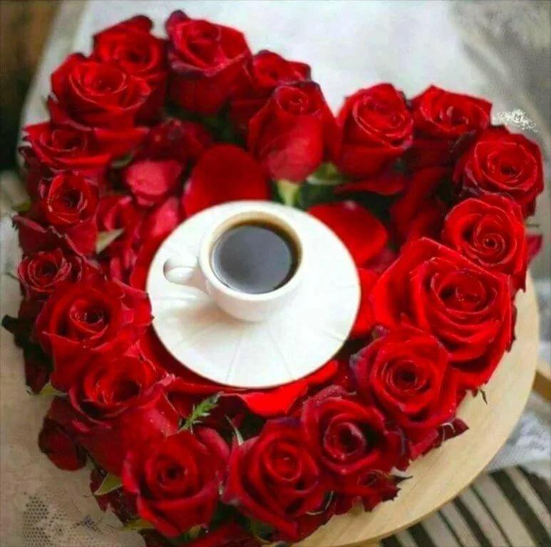 Днем, картинки любимой женщине с добрым утром и большими цветами роз