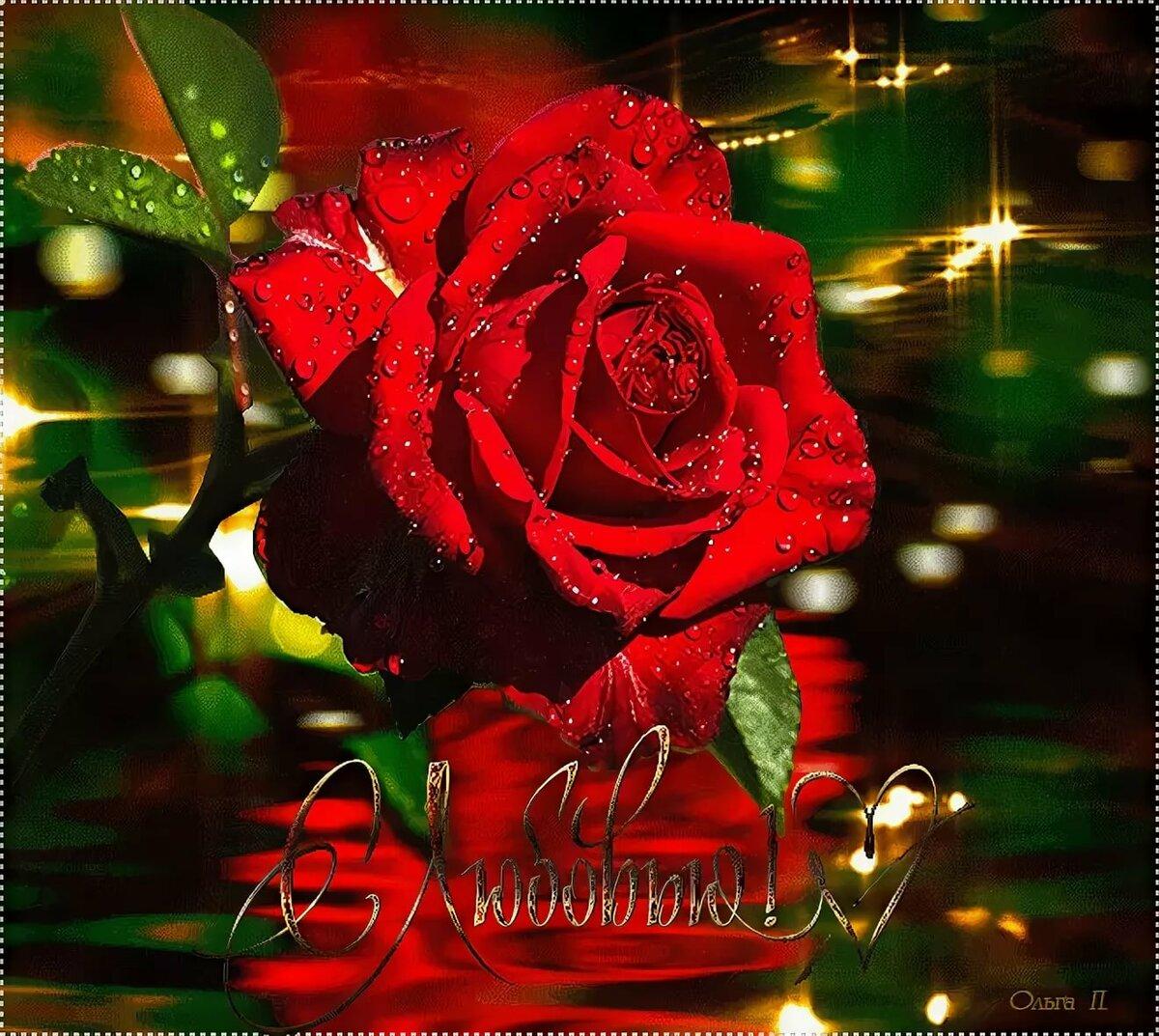 давно открытки розы гифки такое пилатес, фитнес