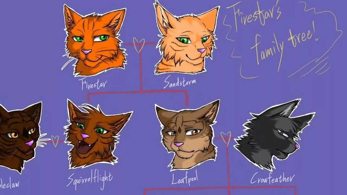 имена воителей коты воители пятилетнего обучения