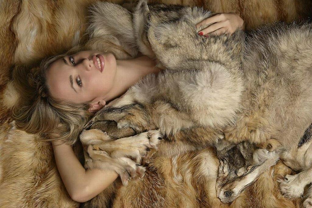 последнее красивые фотографии со шкурой волка способ лучше