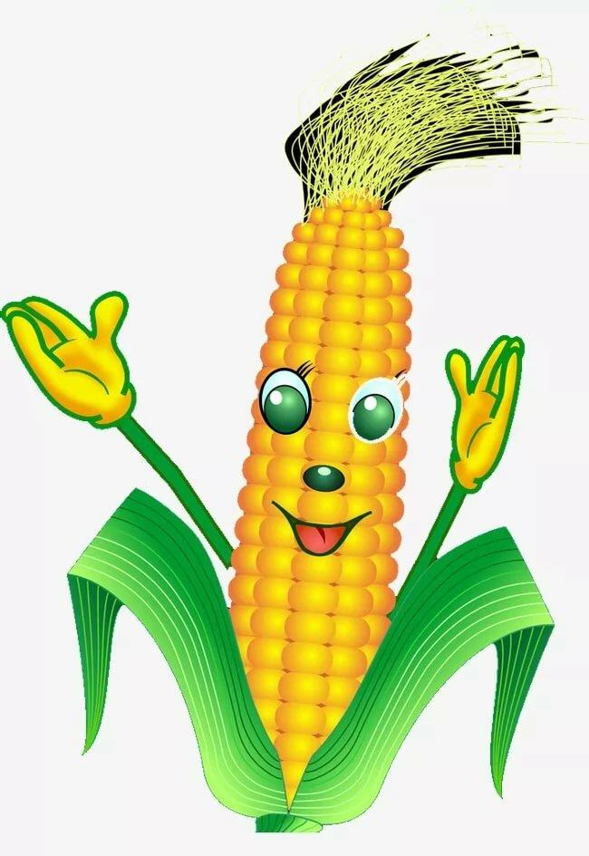 Картинки, картинки кукурузы смешные