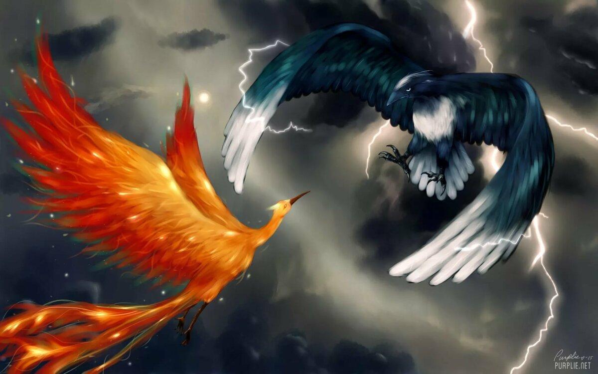 картинка феникс в полете всего
