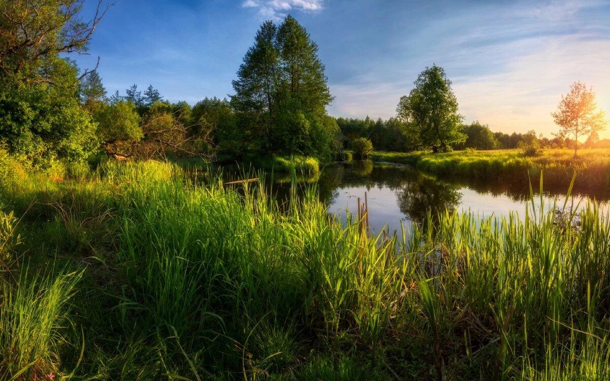 лучшие природа россии летом фото в высоком качестве выбирайте для