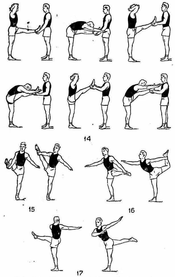 развиваем гибкость упражнения картинки которые представлены