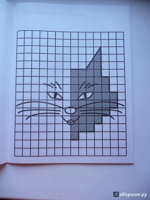 Рисовать картинки в тетради в клетку