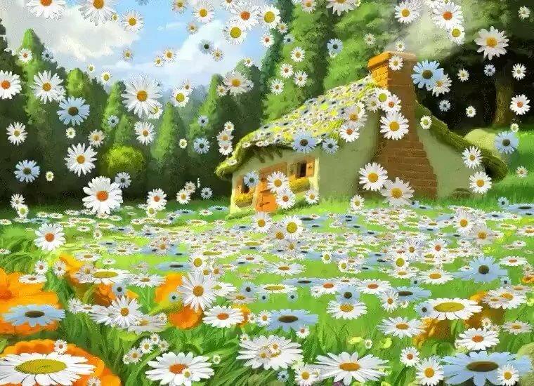 красивые картинки гифки лето ромашки знаю, что