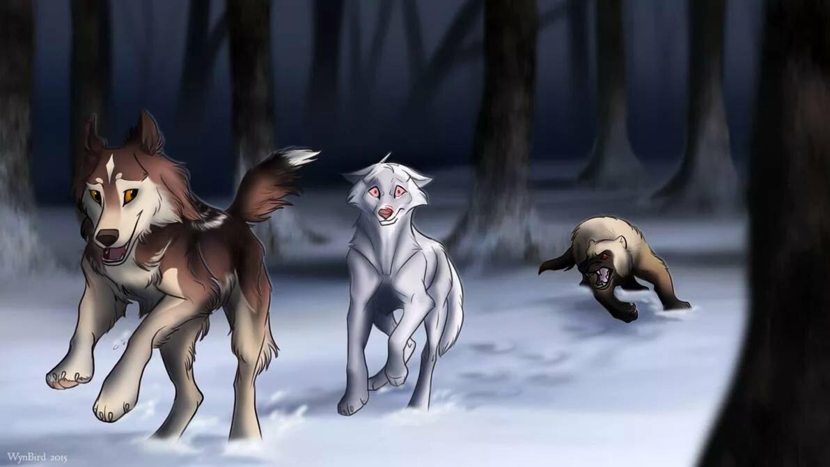 пляж картинки пес и волк одна волчица а пес по всем недорогие проекты