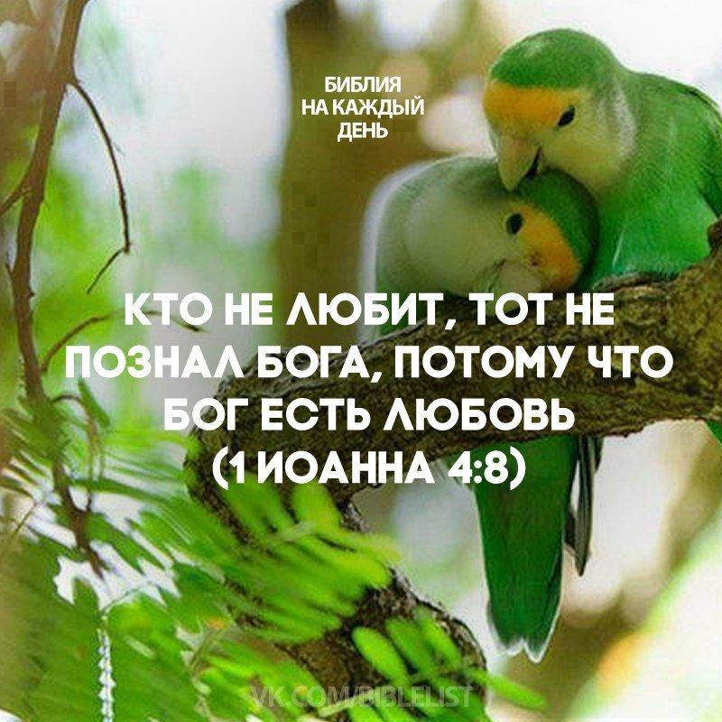Цитаты из библии о любви картинки