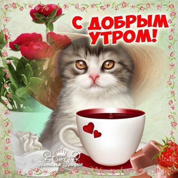 Доброе утро картинки красивые подруге, смешные