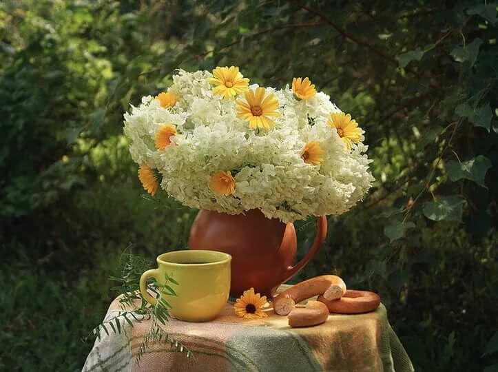 картинки солнечного утра с цветами выбираю