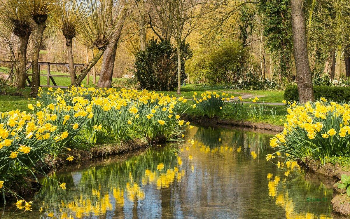 картинки весна пришла красивые пейзажи