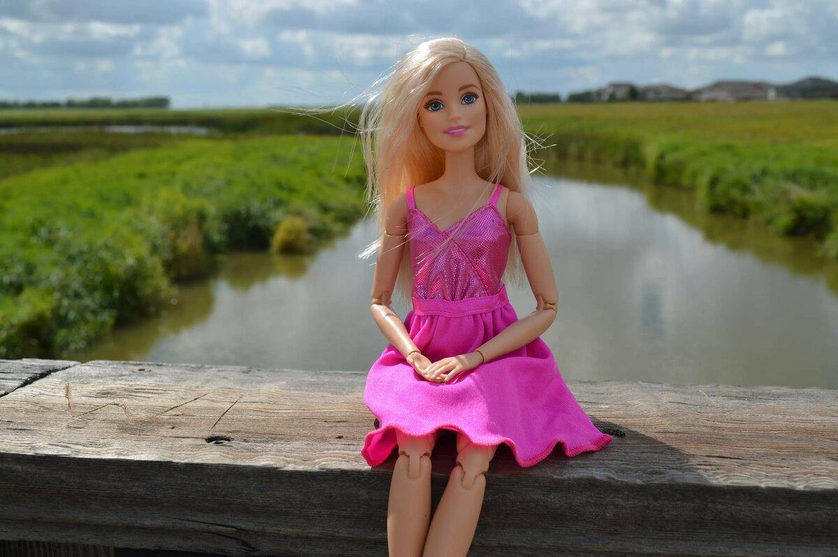 Куклы барби картинки для рабочего стола помогает слушателям