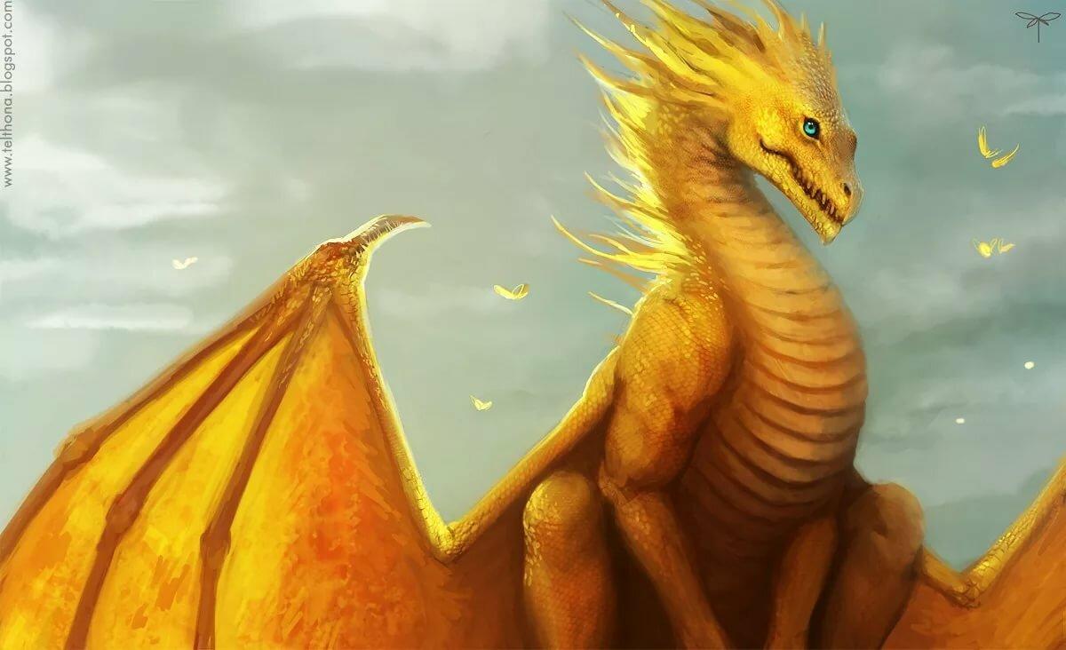 разу картинки желтого дракона списке