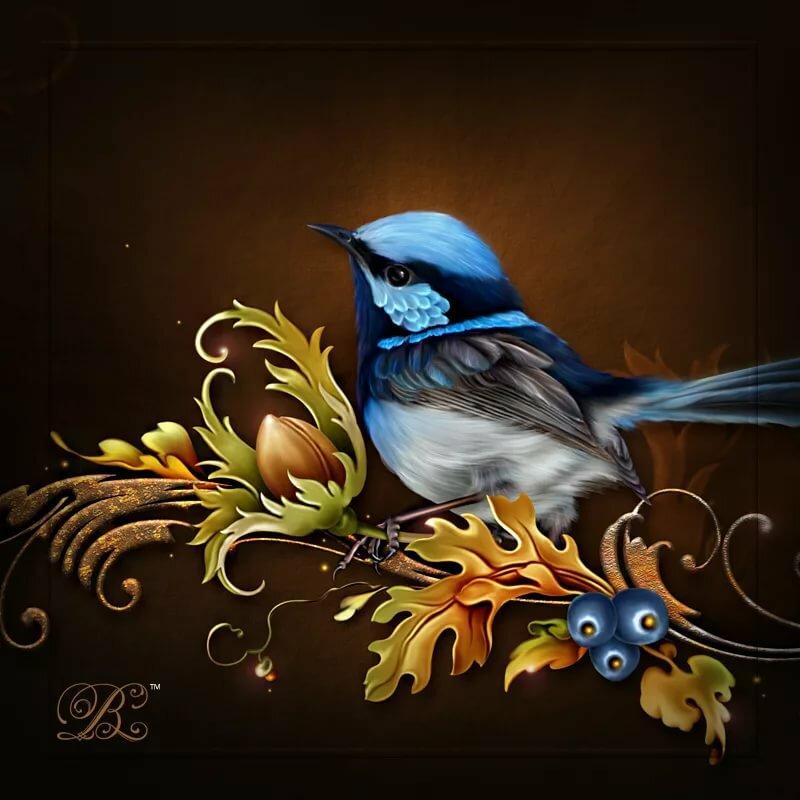 Открытки с синей птицей, открыток вышивкой открытки