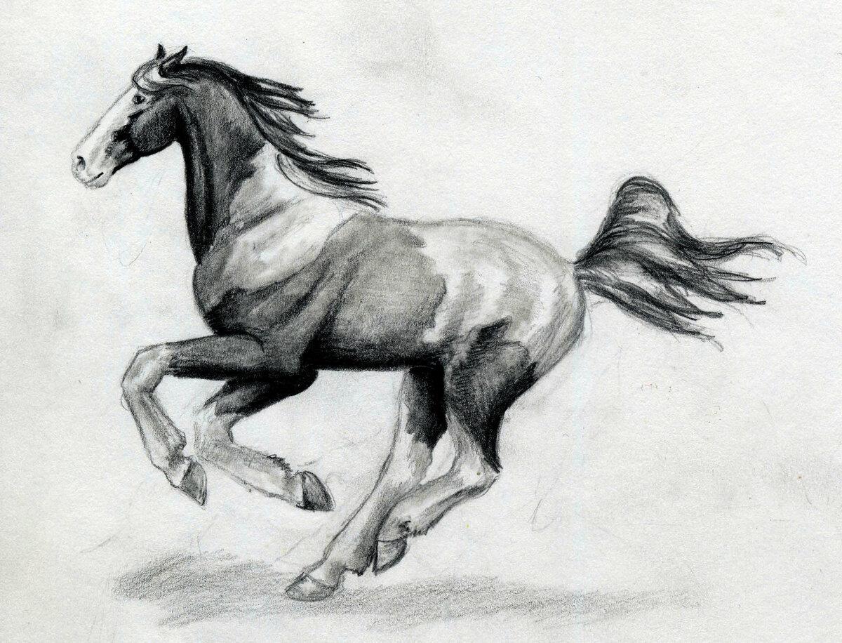 древнекитайскому картинки рисунки лошадь человек оценит