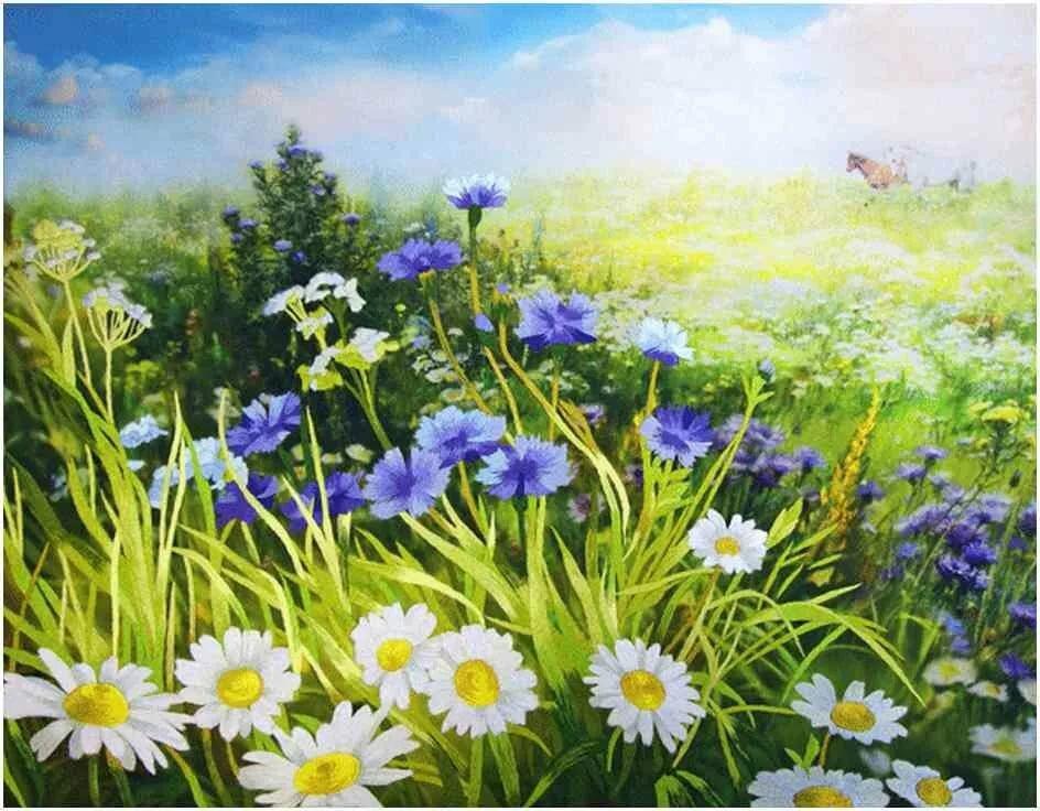 Картинки цветы на лугу для детей