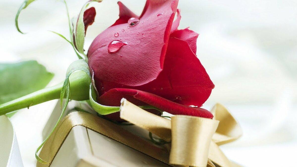 Открытка для мужчины с днем рождения с цветами, приколом