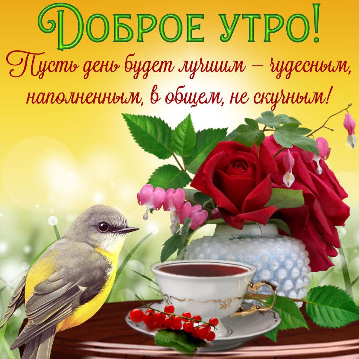 Пожелания доброго дня в картинках с надписями коллекции