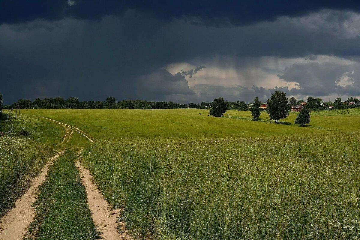 калининградской области картинки природа средней полосы россии красивые для эффективного