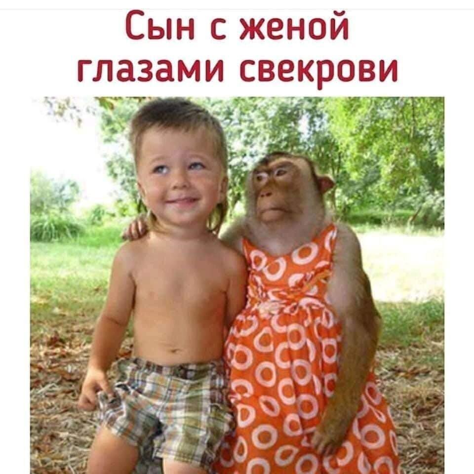 Прикольные картинки про сыночка