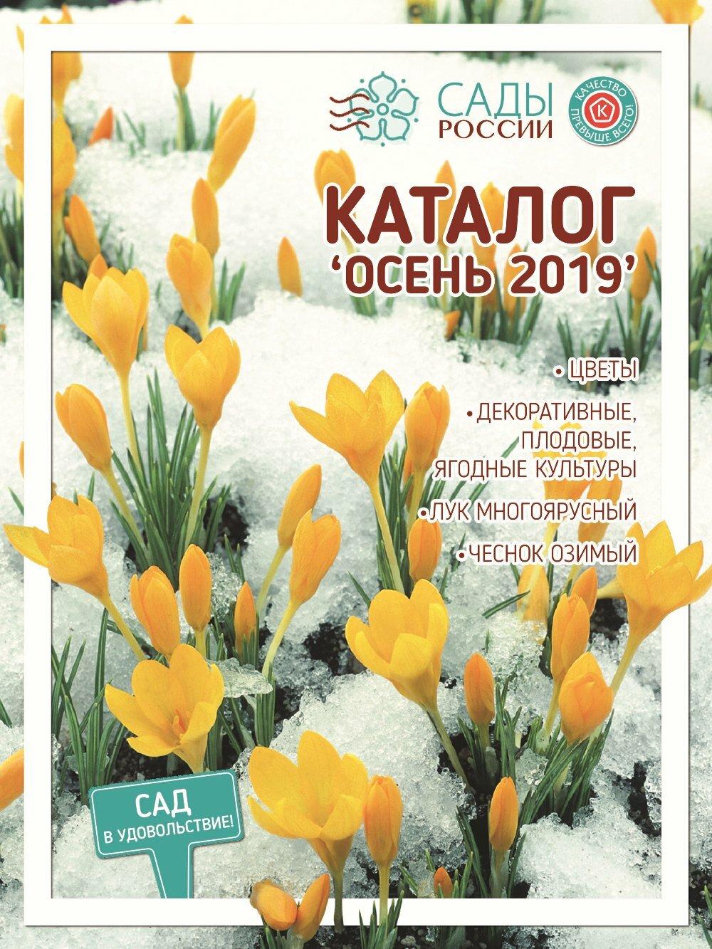 цветы россии челябинск каталог официальный сайт новые лоты