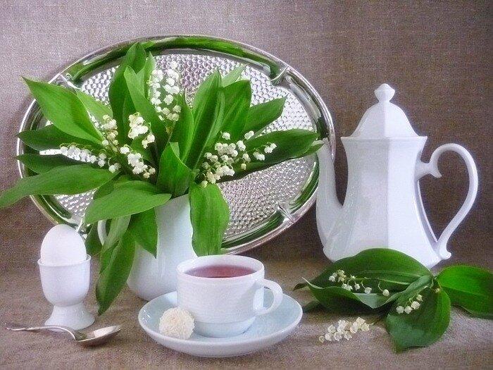 Картинки весенние с цветами с добрым утром