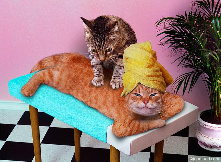 Картинки прикольные смешные массаж