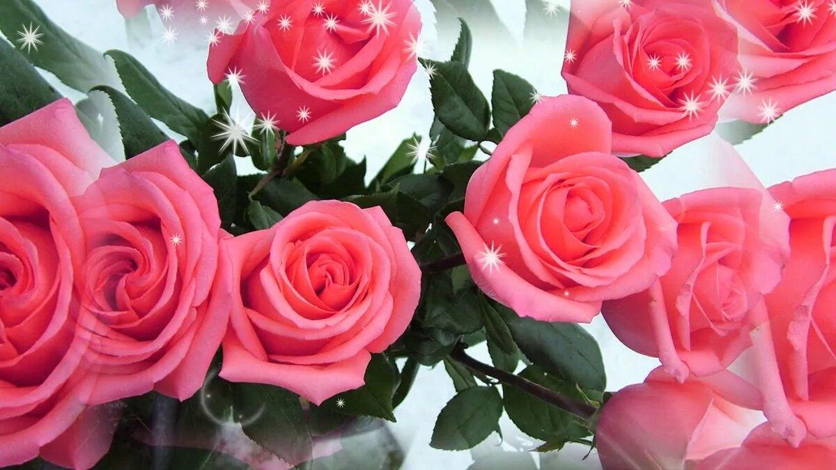С днем рождения открытка фото розы