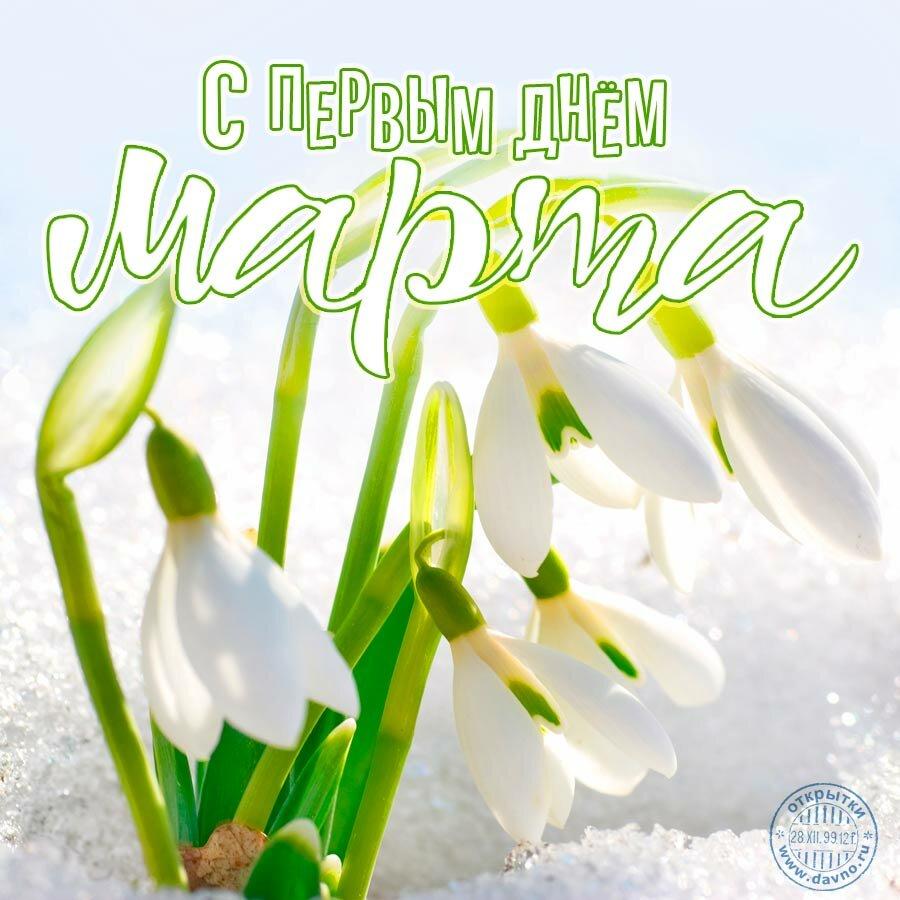 Первое марта открытка