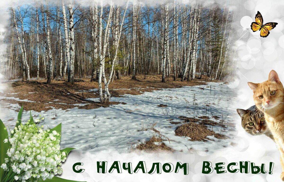 Дыхание весны картинки белого
