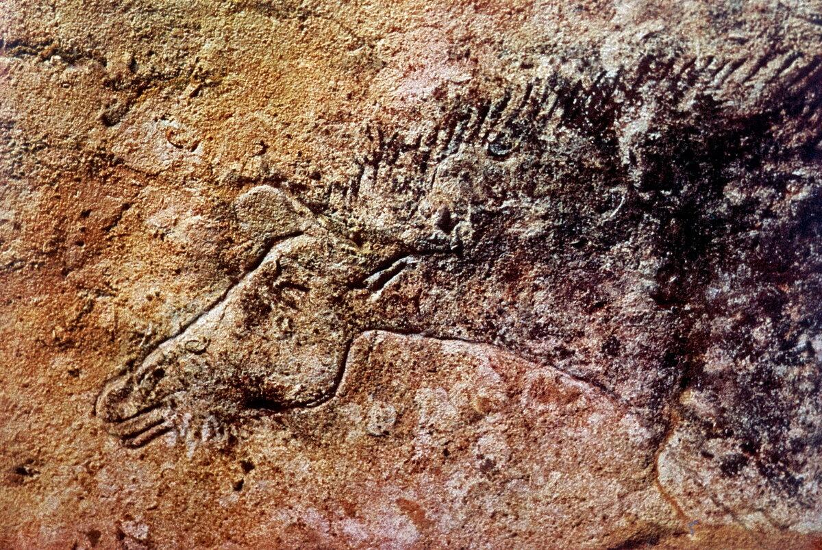 Пещера Ласко. Голова лошади из Пассажа