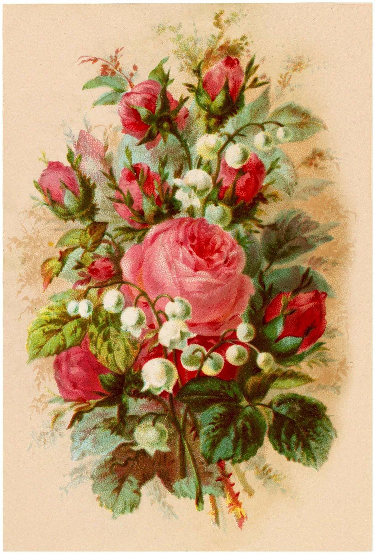 красивые картинки с цветами старинные которых нужен