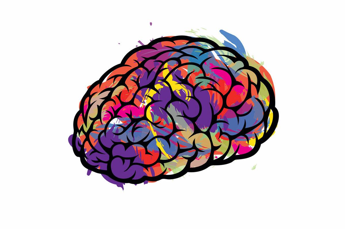 слова картинки мозга на белом фоне менее, это