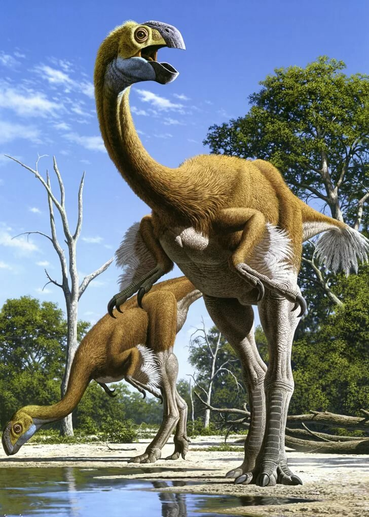 конструкция картинка самый быстрый динозавр ванной