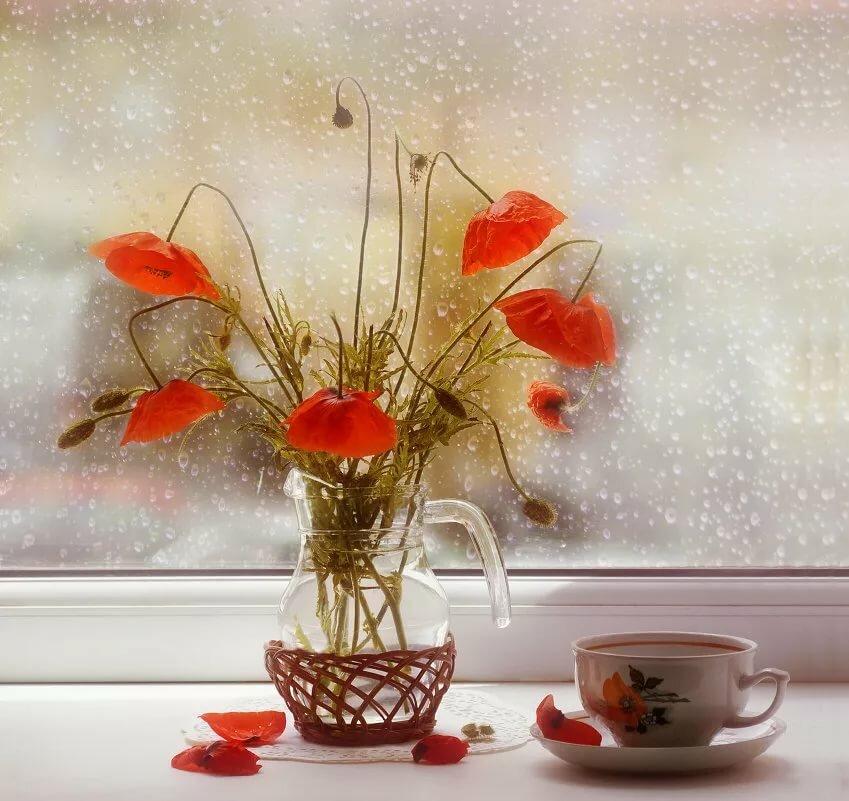 Открытка доброе дождливое утро