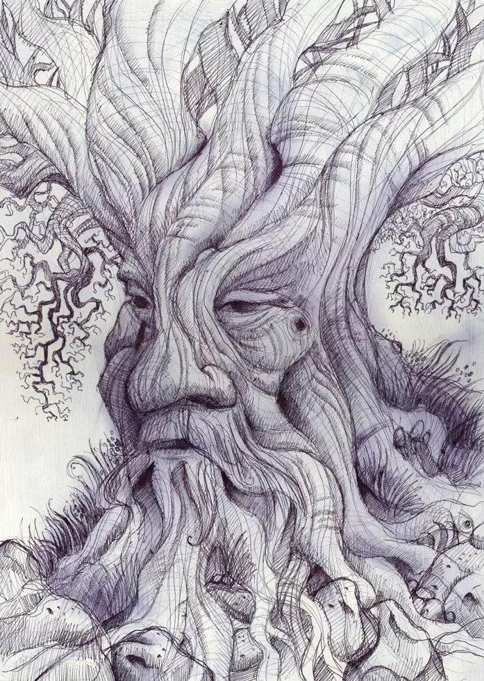 фантастический лес рисунок карандашом гарнир котлете по-киевски