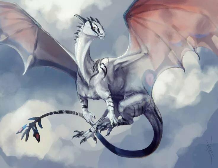 Серые драконы картинки эти особенности