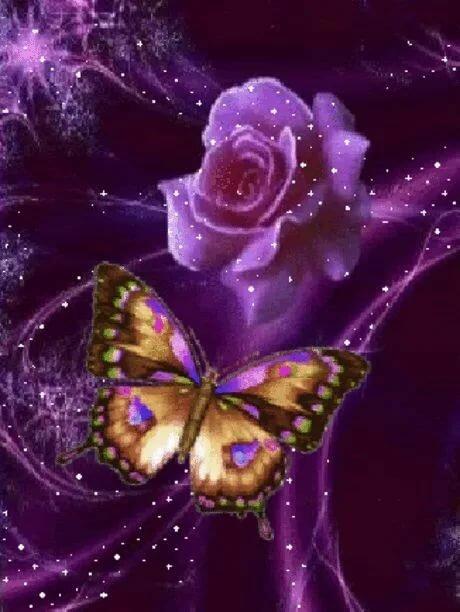 Бабочки картинки красивые необычные движущиеся блестящие