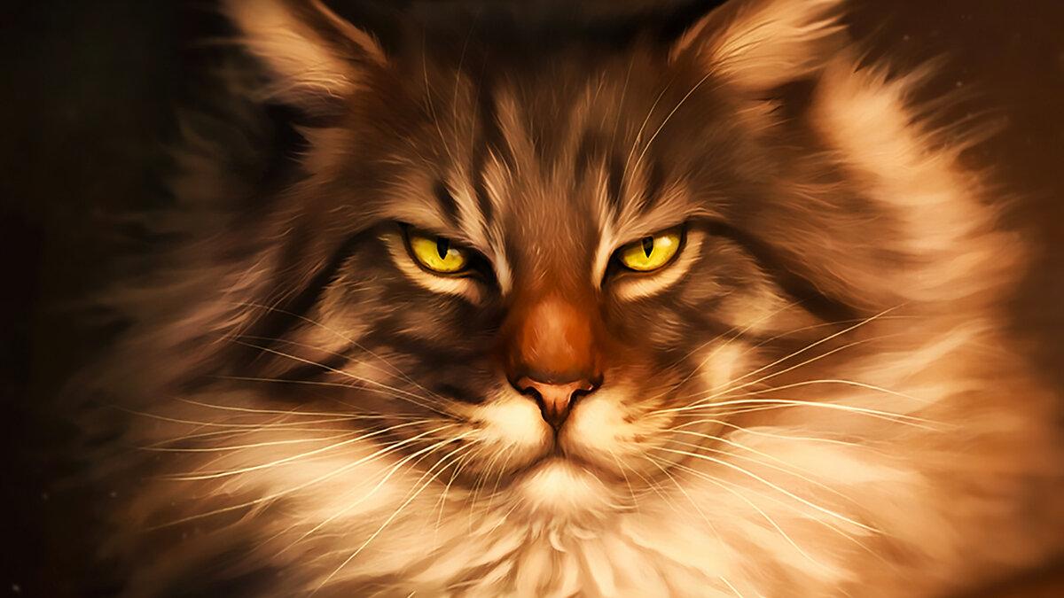 Красивые картинки котов воителей на рабочий стол