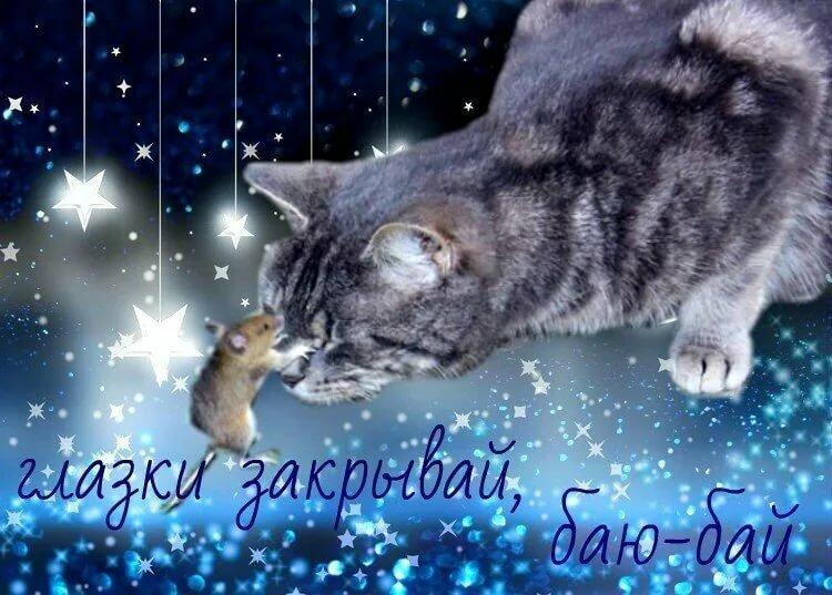 Техникой, мерцающие открытки спокойной ночи и сладких с кошками