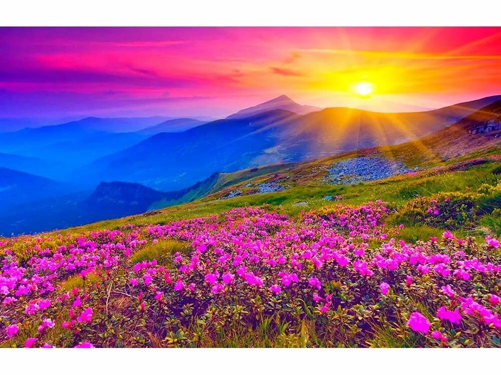Картинки фотки природы