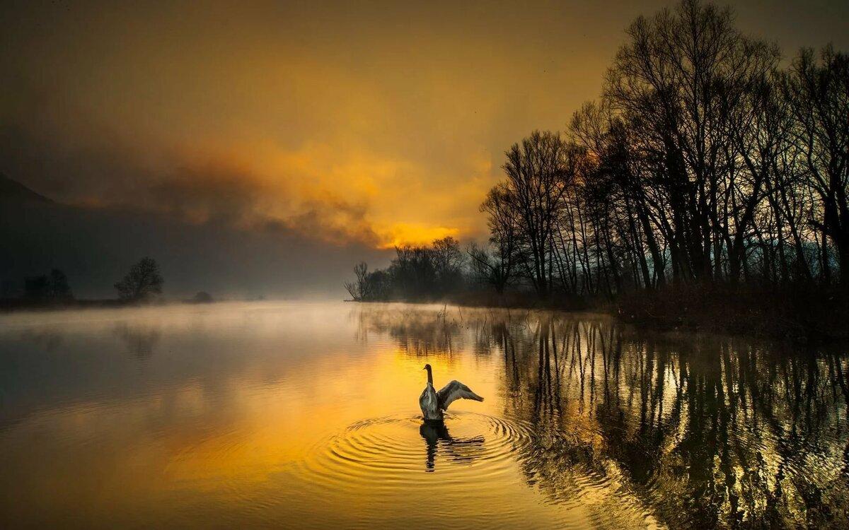 лучшие фотографы пейзажисты мира видеороликов одним самых