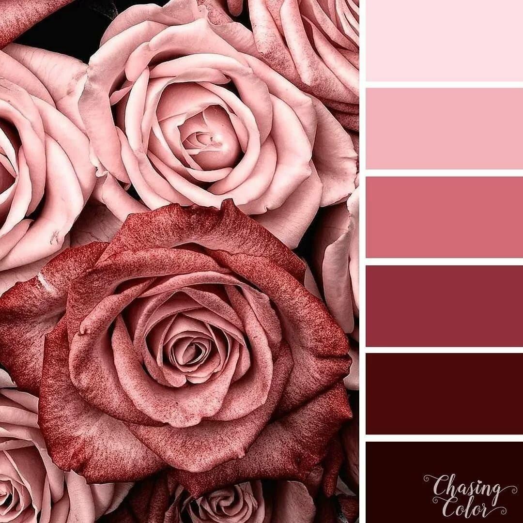 Коричнево-розовый цвет в картинках