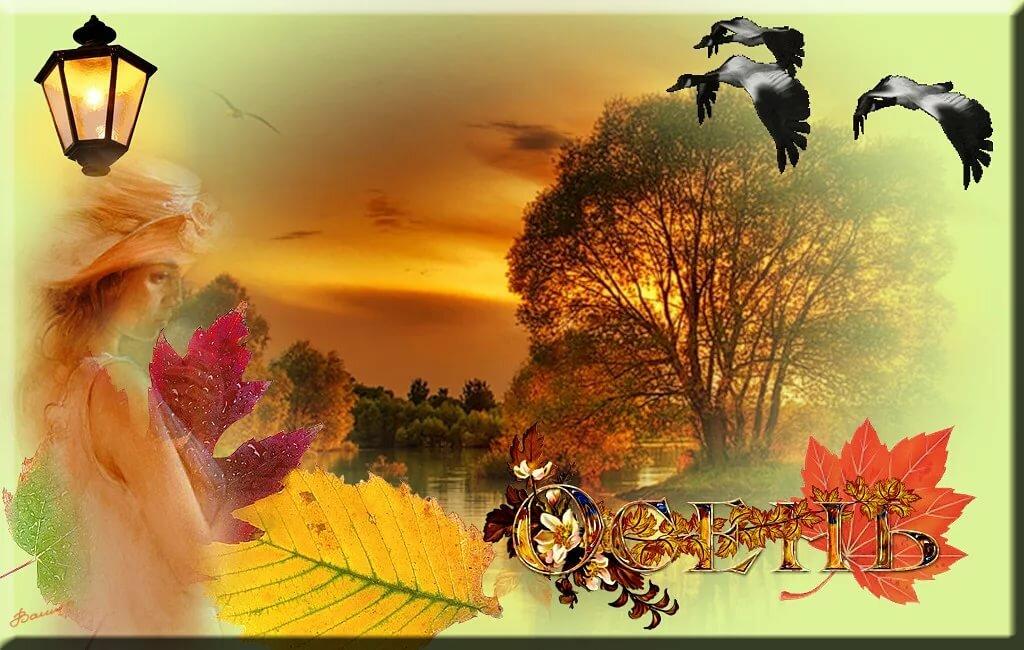 Анимация здравствуй осень золотая