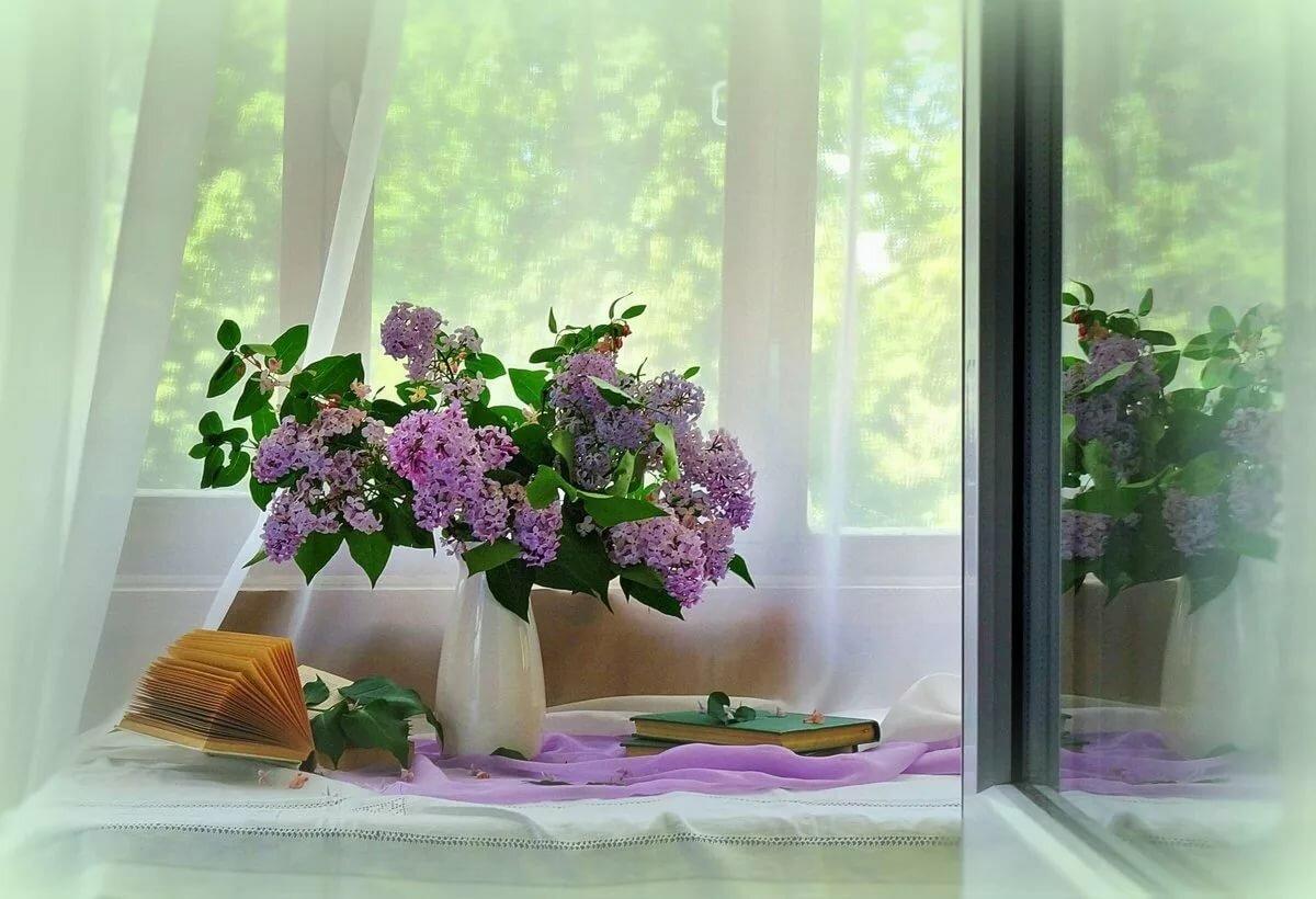 букеты на окне весной