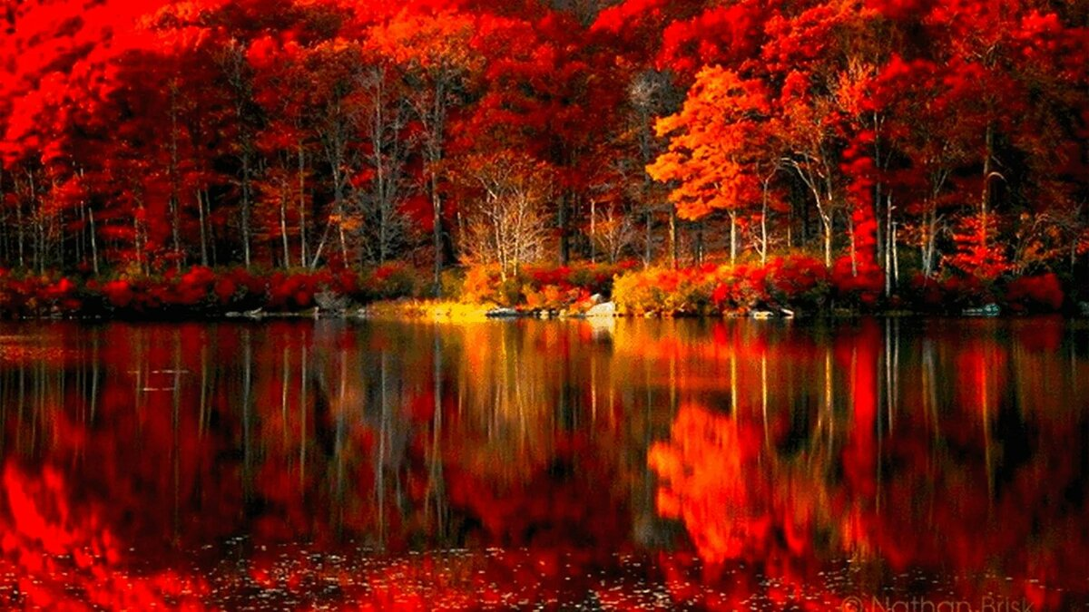 любом красивое фото про осень неё простые люди