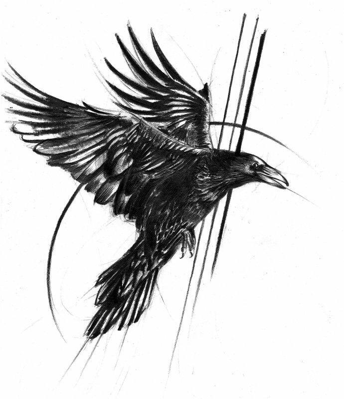 Черно белые картинки птицы из спины